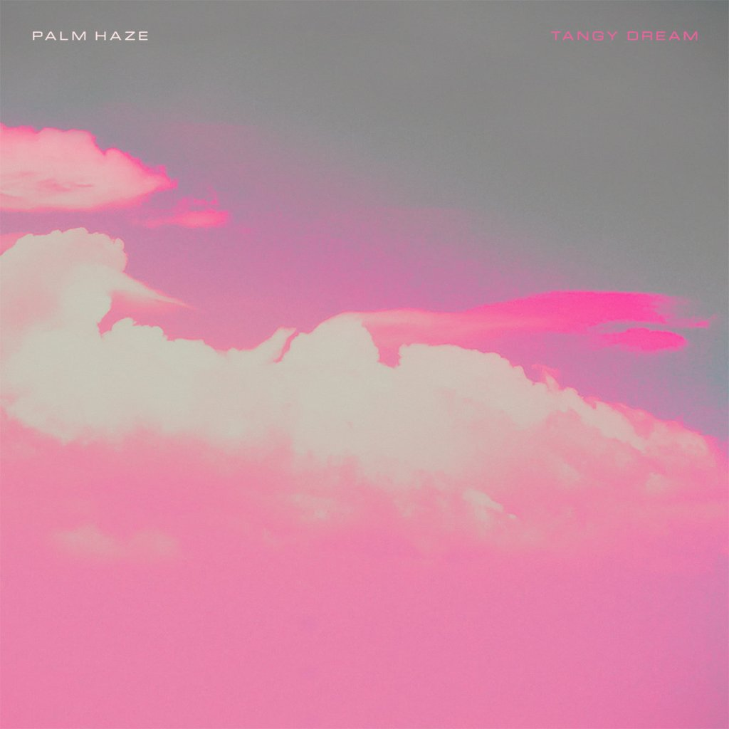 "Palm Haze ""Tangy Dream"" cover"